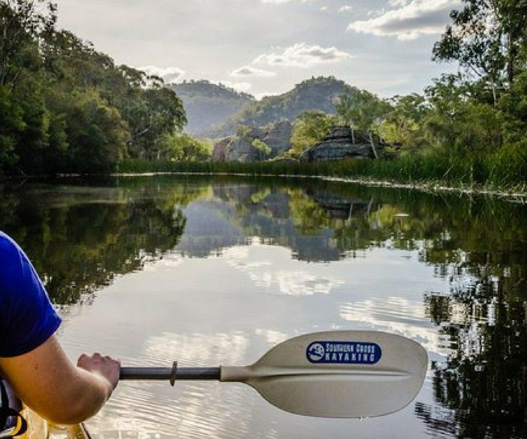 Dunns Swamp kayak tours