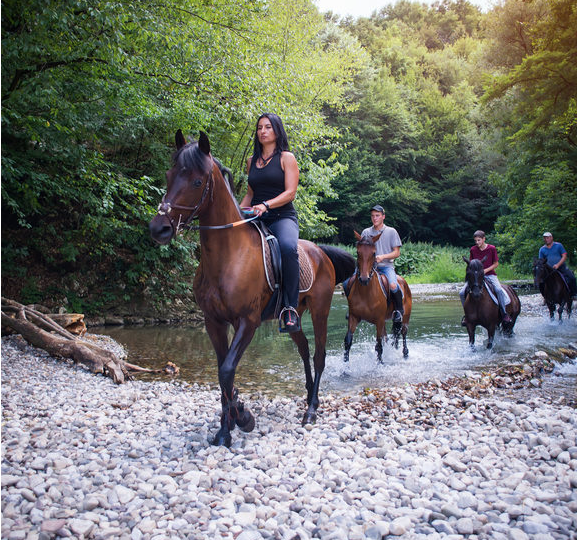 Horseback Riding Tours by Country Escape Tours
